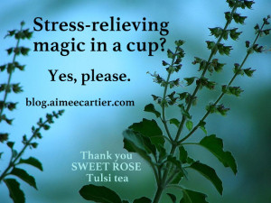 Stress-relieving magic in a cup? Yes please. aimee cartier blog. Tulsi plant pic by by Rajagopal Govindaraj