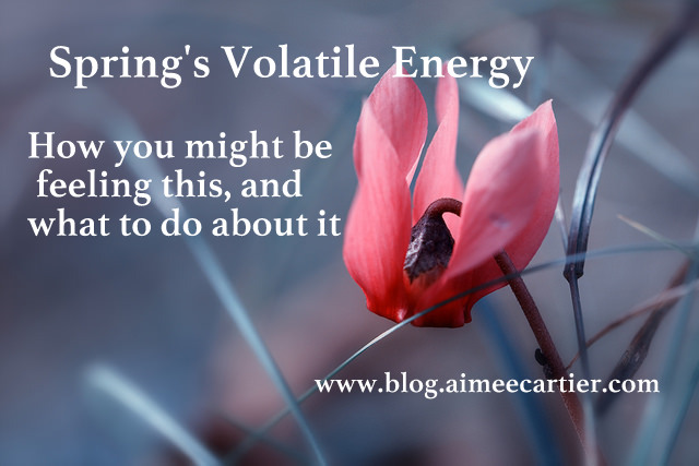 Volatile Spring Energy Aimee Cartier blog (pic by Markus Grossalber)