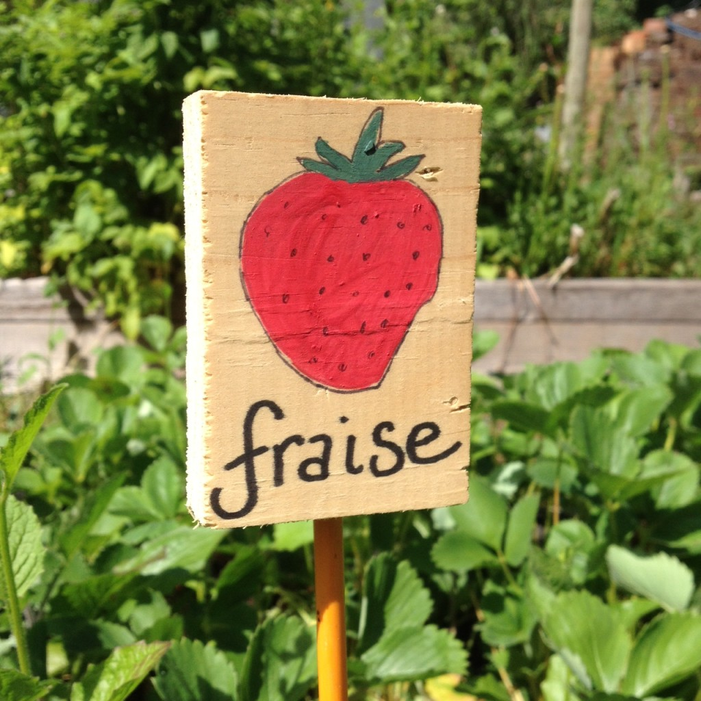 Just in case you didn't see the berries.  Garden sign made by yours truly.