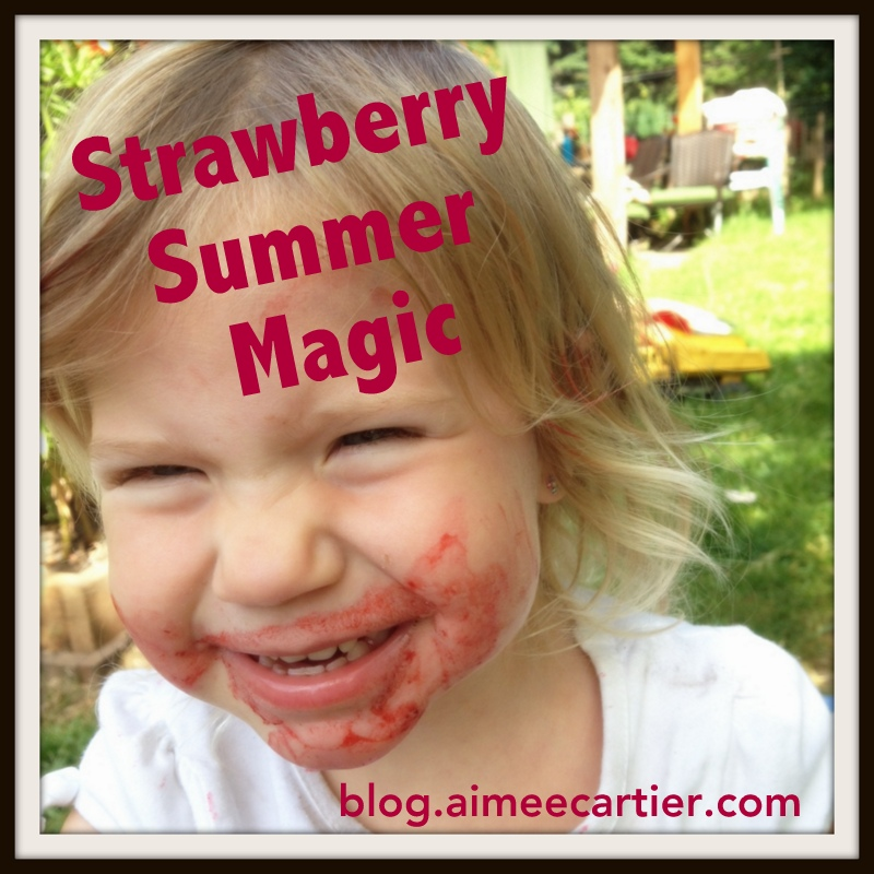 strawberry summer magic story by aimee cartier blog-001