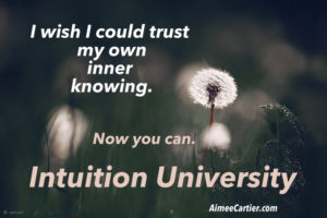 I wish I could trust my own knowing Intuition University pic seyed mostafa zamani-001